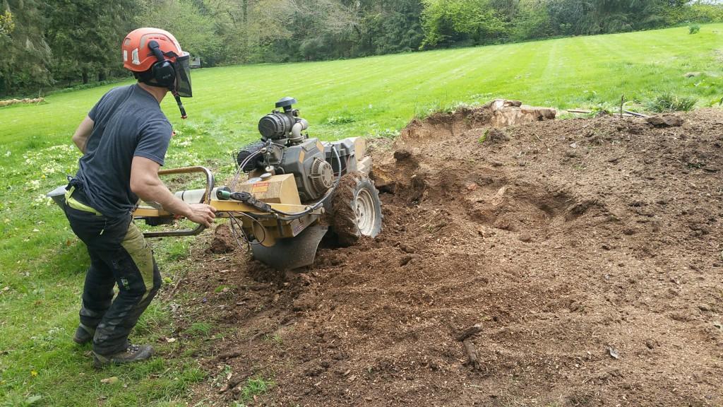 Biggest stump grind hopefully ever!!